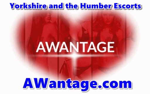 Yorkshire and the Humber Escorts