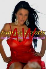 Roy Premium Escorts For Dudley And West Midlands